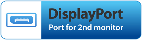 DisplayPort Output